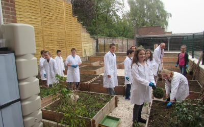 Création d'un jardin pédagogique